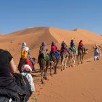6-days-desert-tour