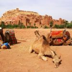 kasbah ait ben haddou day trip 560x460 1