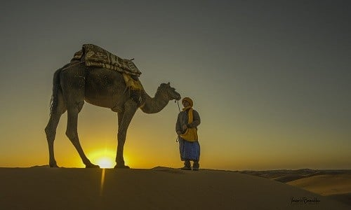 14days grand tour of morocco experience from casablanca