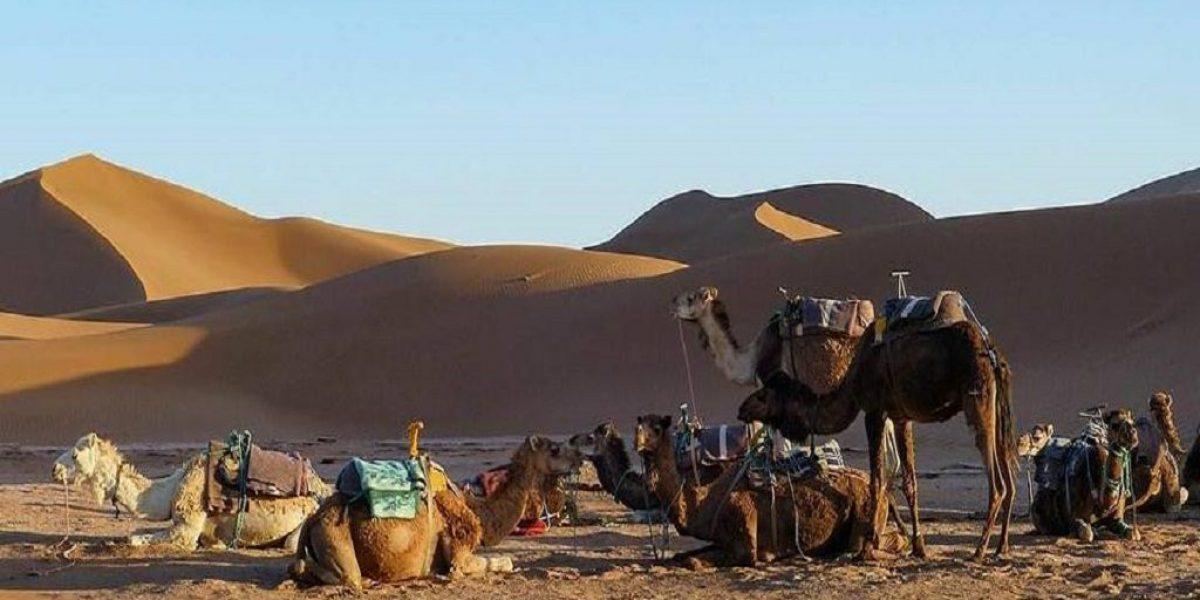 Private-desert-tour-morocco-1024x760