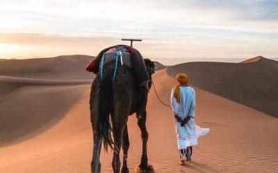 3 days marrakech trips