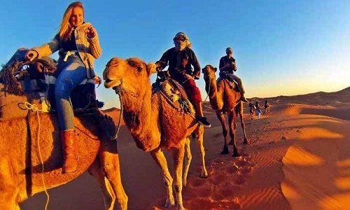 desert tour fez