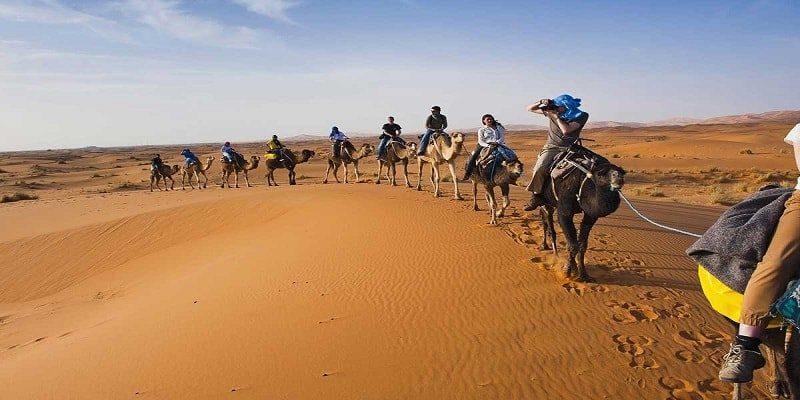 fez desert tour