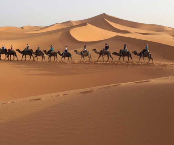 8 Days Casablanca To Merzouga Desert Tours