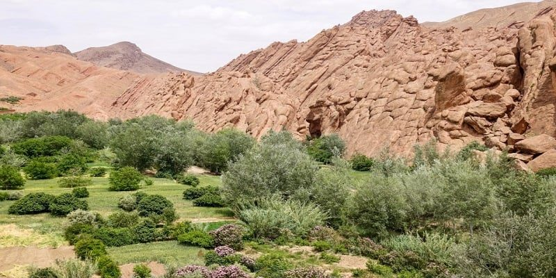 Ddes valley 3 day tour from marrakech